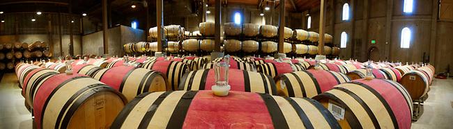 barrel cellar at Charles Krug winery