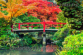 Tom Mackie, LANDSCAPES, LANDSCHAFTEN, PAISAJES, photos,+America, American, Americana, Kubota Garden, North America, Pacific Northwest, Seattle, Tom Mackie, USA, Washington, autumn,+autumnal, bridge, bridges, colorful, colourful, fall, horizontal, horizontals, inspiration,inspirational, inspire, japanese g+arden, japanese maple, landscape, landscapes, leaf, leaves, natural, nature, no people, red, reflect, reflecting, reflection,+reflections, scenery, scenic, season, tree, trees, yellow,America, American, Americana, Kubota Garden, North America, Pacifi+,GBTM170613-1,#l#, EVERYDAY