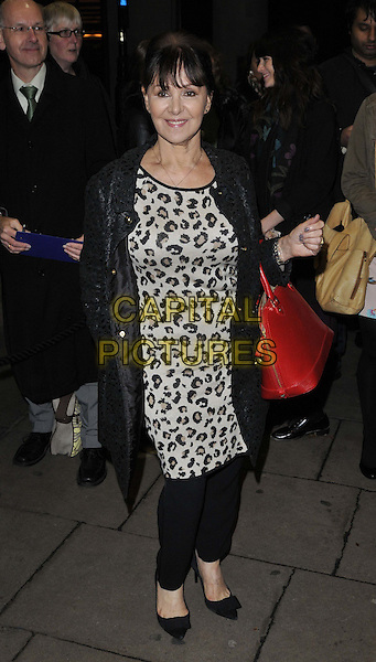 LONDON, ENGLAND - NOVEMBER 03: Arlene Phillips attends the &quot;Dance 'Til Dawn&quot; press night performance, Aldwych Theatre, Aldwych, on Monday November 03, 2014 in London, England, UK. <br /> CAP/CAN<br /> &copy;Can Nguyen/Capital Pictures