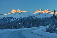 The Icefields Parkway  in the Canadian Rocky Mountains  in evening light, Banff National Park, Alberta, Canada