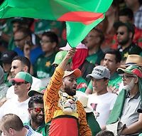Tigers fan dressed for the occasion during Pakistan vs Bangladesh, ICC World Cup Cricket at Lord's Cricket Ground on 5th July 2019