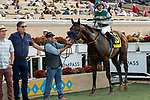 "DEL MAR, CA  AUGUST 17:  #6 Higher Power, ridden by Flavien Prat, in the winners circle after winning the TVG Pacific Classic (Grade 1) ""Win and You're In Breeders' Cup Classic Division"" on August 17, 2019 at Del Mar Thoroughbred Club in Del Mar, CA. (Photo by Casey Phillips/Eclipse Sportswire/CSM)"