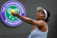 London, England, 1  st July, 2019, Tennis,  Wimbledon,  Venus Williams (USA)<br /> Photo: Henk Koster/tennisimages.com