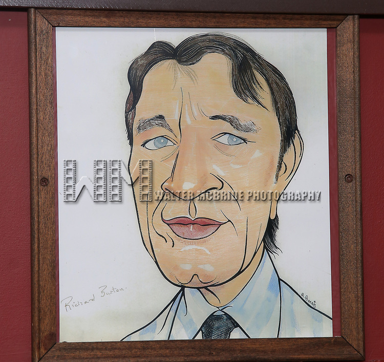 Richard Burton caricature during the Sardi's Caricature Unveiling for Kate Burton joining the Legendary Wall of Fame at Sardi's on June 28, 2017 in New York City.