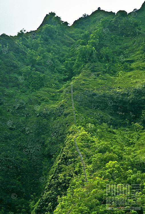 Stairway to heaven hiking steps lodged into the Koolau mountain range on the windward side of Oahu