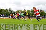 The boys 60 meters under 8 semi final was prove to be the most exciting at the Denny Kerry Coummunity Games finals in Castleisland on Sunday as after a blanket finish the judges asked for a rerun of the race included are Bobby Byrne Blennerville/Ballyard, Tom Coffey Dingle, Conall Cournane Dromid/Caherdaniel, Rory O'Halloran St Brendans/Oakpark, Brendan O'Tracey Tarbert, Niall Collins Ballymac, Sean ó Fionnachta An Gaelteacht and Cillian Reidy Castleisland
