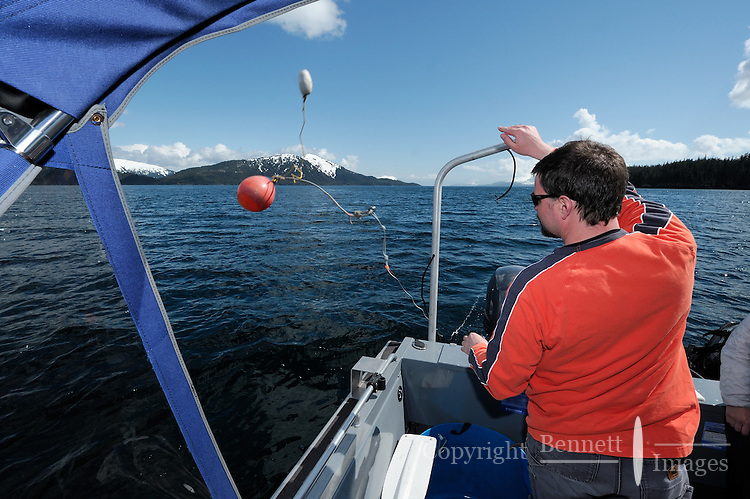 Dug Huntman, throws a buoy overboard to mark his shrimp pots in Passage Canal near Decision Point, Prince William Sound, Southcentral Alaska on a sunny spring afternoon in early May. MR