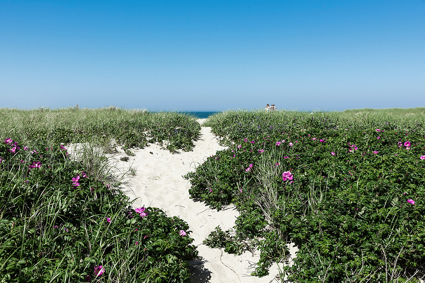 Great Point beach path, Nantucket, Massachusetts, USA.