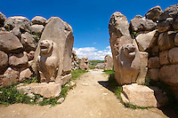 Photo of the Hittite releif sculpture on the Lion gate to the Hittite capital Hattusa 7