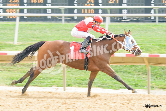 No Its Not winning at Delaware Park on 9/25/15