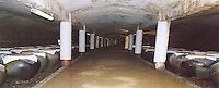 An underground cellar at the Xiongsen Liquor Limited, Pingnan, Guangxi, in picture take from their brochure. The factory uses tiger bones to make tiger wine tonic used to treat arthritis amongst other things.