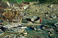 Kleingewässer, Tümpel, Teich mit Müll, vermüllt, Umweltverschmutzung