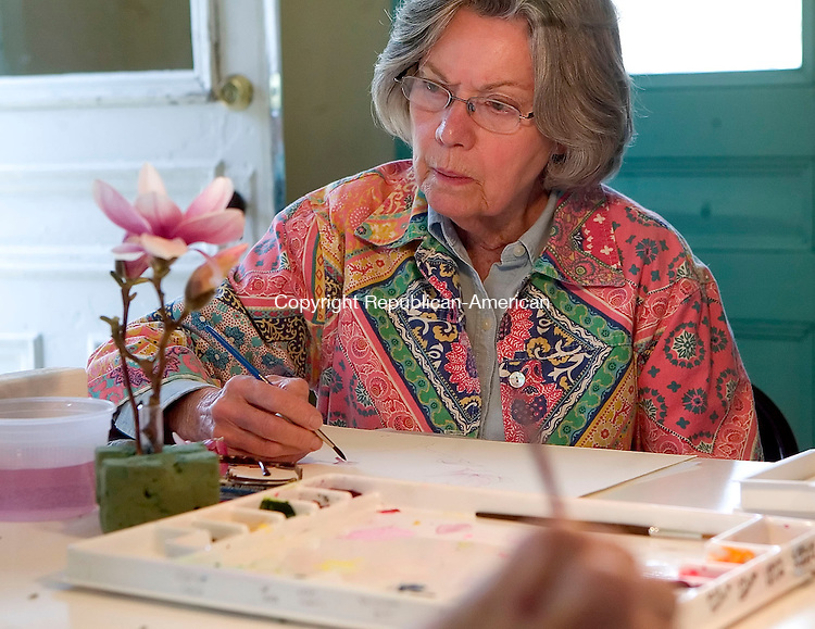 BETHLEHEM, CT- 24 APRIL 07- 042407JT14-<br /> Ann Nicoll of Southbury studies the magnolia in front of her during a watercolor workshop on the flower taught by Betsy Rogers-Knox at the Bellamy-Ferriday House in Bethlehem on Tuesday, April 24.<br /> Josalee Thrift Republican-American