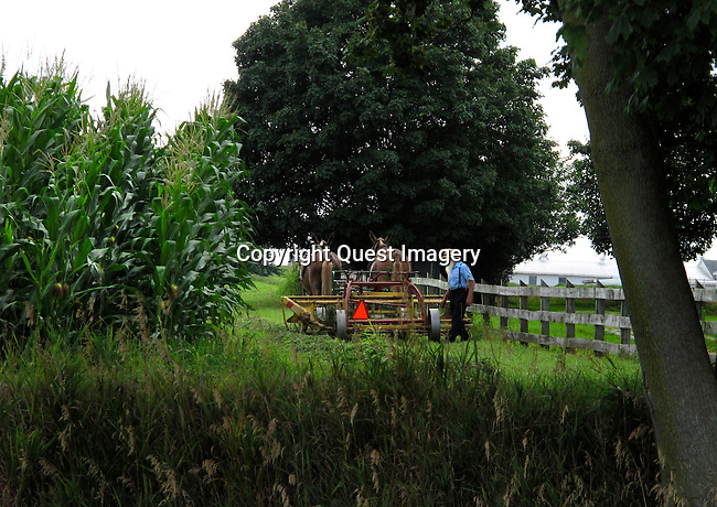 Images of Lancaster County, PA, primarily in the area around Bird-In-Hand. It is home to a huge Amish population, who still practice strict lifestyles without the use of machinery.<br /> Photo by Deirdre Hamill/Quest Imagery