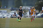 Germantown Legends White vs. Gateway Fury FC in the Rose Cup at Mike Rose Soccer Complex in Memphis, Tenn. on Sunday, September 27, 2015.