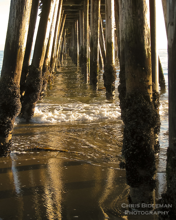 Gentle waves from the sea are rolling through pier pilings viewed below a pier with muscles attached with the warmth of the sunset glow and the reflection of the pilings in the slack water and sand