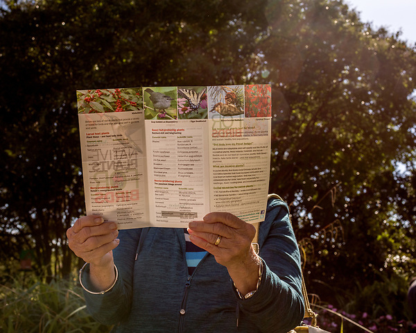 October 26, 2017. Raleigh, North Carolina.<br /> <br /> A garden dedication attendee looks over the information pamphlet about the new plants.  <br /> <br /> A new garden designed by Ben Skelton containing native Plants For Birds was dedicated at the North Carolina Executive Mansion.