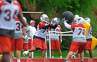 May 20, 2009; Tempe, AZ, USA; Arizona Cardinals guard (74) Reggie Wells does medicine ball drills with guard (76) Deuce Lutui during organized team activities at the Cardinals practice facility. Mandatory Credit: Mark J. Rebilas-