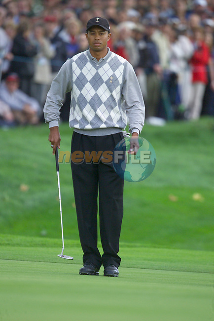 Tiger Woods lines up his putt on the 11th green during the Morning Fourball on Day1 of the 2006 Ryder Cup at The K Club 21st September 2006.(Photo Eoin Clarke/Newsfile)