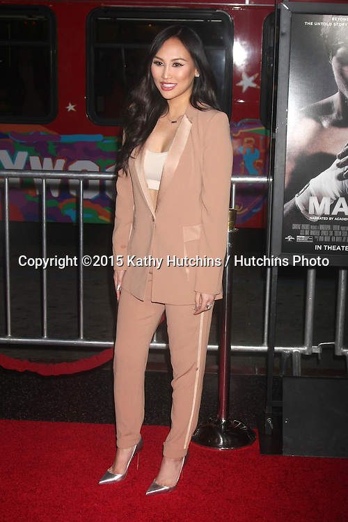 """LOS ANGELES - JAN 20:  Dorothy Wang at the """"Manny"""" Los Angeles Premiere at a TCL Chinese Theater on January 20, 2015 in Los Angeles, CA"""