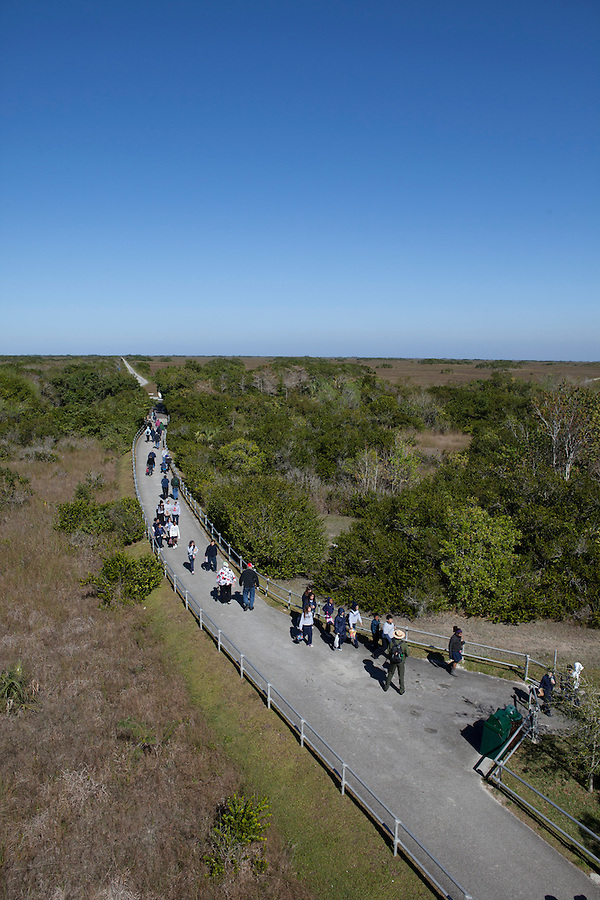 Tourists visit the Shark Valley area, Everglades National Park, Florida, USA