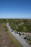 Tourists visit the Shark Valley area, Everglades National Park, Florida, USA