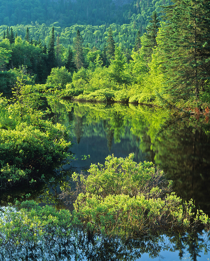 Riviere Saint Marguerite..Highway 172 scenic corridor..Quebec..June, 2005...Copyright Garth Lenz. Contact: lenz@islandnet.com www.garthlenz.com