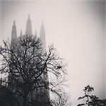 This shot was taken of Duke Chapel on a foggy morning - right in the midst of the Muslim call-to-prayer controversy at Duke. I thought to myself, &quot;Duke Chapel is in a fog&quot; literally and figuratively.<br /> <br /> ---<br /> R O S S   W A D E<br /> Assistant Director - Duke University Career Center<br /> ross.wade@duke.edu<br /> Smith Warehouse<br /> 114 S. Buchanan Blvd, Bay 5<br /> Box 90950<br /> Durham, NC 27708<br /> 919-660-1050