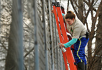 NWA Democrat-Gazette/BEN GOFF @NWABENGOFF<br /> Kelly Hurlbut, an intern from North Carolina, helps paint a new section of fence on Thursday March 3, 2016 as staff work on new tiger habitats at Turpentine Creek Wildlife Refuge in Eureka Springs.