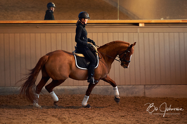 Helen Johansson riding seven year old gelding Strano (Hejbols De Strano, e De Noir - Golfstrom II, born 2007, breeder Per Torp, owner Helen Johansson) during training for dressage coach Ulrika Andersson. Rang Strand, Sweden. <br />