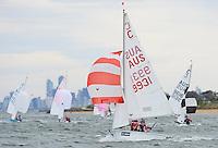 2013 Sail Melbourne - Cadets