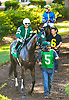 Martini Glass before The Winter Melody Stakes at Delaware Park on 9/15/16