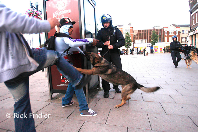 PH: Rick Findler..07.08.11 A police dog gets kicked as the dog attacks a suspect after shop windows were smashed in Enfield town centre ealier this afternoon. The violence was sparked by the fatal shooting of Mark Duggan by a police officer on thursday night.