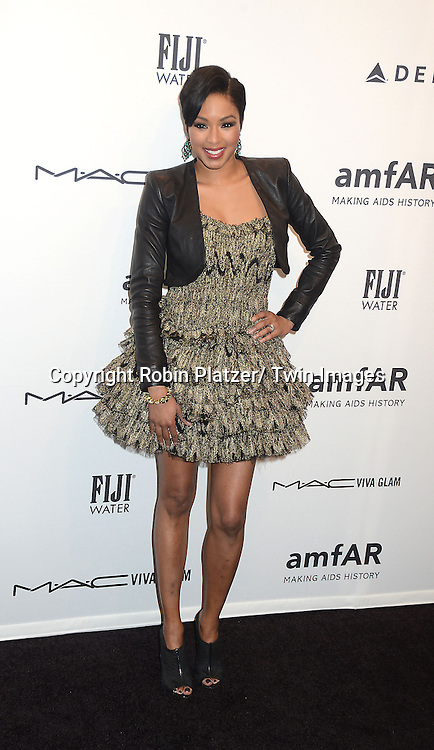 Alicia Quarles attends the amfAR New York Gala to kick off Fashion Week on February 6, 2013 at Cipriani Wall Streetin New York City. The honorees were Heidi Klum, Janet Jackson  and Kenneth Cole.