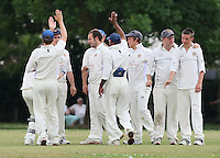 Doyle (R) of Hornchurch Athletic celebrate the wicket of T Maloney - Hornchurch Athletic CC 3rd XI vs Noak Hill Taverners CC - Lords International Essex Cricket League at Hylands Park - 27/06/09- MANDATORY CREDIT: Gavin Ellis/TGSPHOTO - Self billing applies where appropriate - 0845 094 6026 - contact@tgsphoto.co.uk - NO UNPAID USE.