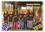 2015 Burlington American Sunflowers