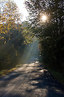 Sunbeams light the countryside roadways in Albemarle County. Photo/ Andrew Shurtleff