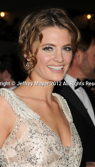 HOLLYWOOD, CA - JANUARY 28: Stana Katic arrives at the 64th Annual Directors Guild Of America Awards at the Grand Ballroom at Hollywood & Highland Center on January 28, 2012 in Hollywood, California.