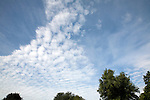 Cirro Cumulus clouds often called mackerel sky
