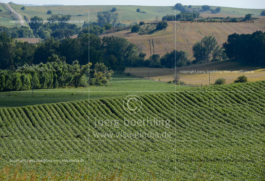 USA, Nebraska, Omaha Reservation, soybean farming
