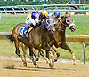 Baileys Beach winning at Delaware Park on 6/28/12