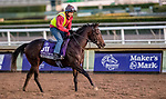 October 30, 2019: Breeders' Cup Juvenile Turf Sprint entrant Dream Shot, trained by James Tate, exercises in preparation for the Breeders' Cup World Championships at Santa Anita Park in Arcadia, California on October 30, 2019. Michael McInally/Eclipse Sportswire/Breeders' Cup/CSM