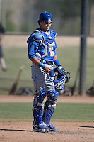 Los Angeles Dodgers catcher Ryan Scott (14) during an Instructional League game against the Chicago White Sox on October 12, 2013 at Camelback Ranch Complex in Glendale, Arizona.  (Mike Janes/Four Seam Images)