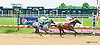 Star of the Forest winning at Delaware Park on 7/14/15