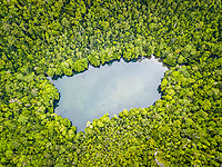 aerial view of a marine lake on a tropical island, West Waigeo, Raja Ampat Islands, West Papua, Indonesia, Pacific Ocean