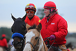 January 18, 2016: Jockey Martin Garcia aboard #4 Toews On Ice before the running of the Smarty Jones Stakes at Oaklawn Park in Hot Springs, AR. Justin Manning/ESW/CSM