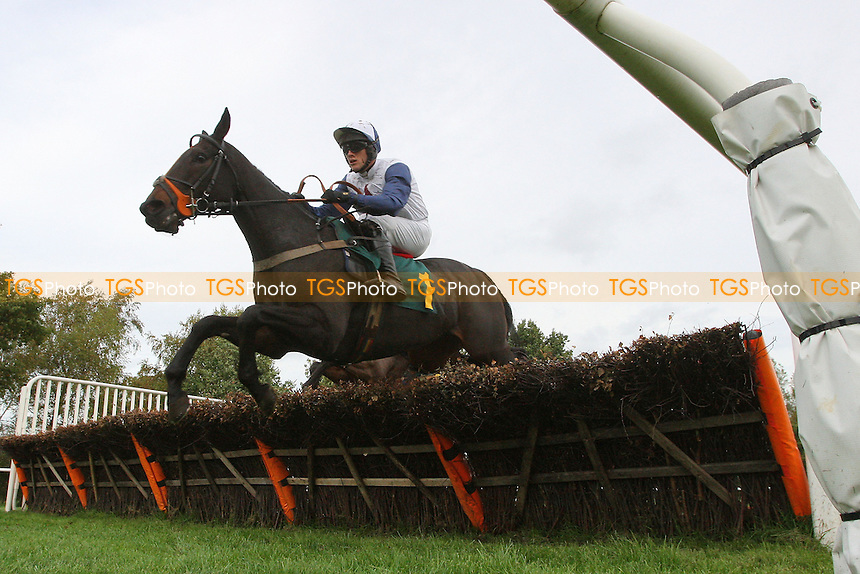 Louis Ludwig ridden by Alan Johns in jumping action during the Pudding Norton Conditional Jockeys Selling Handicap Hurdle - National Hunt Horse Racing at Fakenham Racecourse, Norfolk - 25/10/13 - MANDATORY CREDIT: Gavin Ellis/TGSPHOTO - Self billing applies where appropriate - 0845 094 6026 - contact@tgsphoto.co.uk - NO UNPAID USE