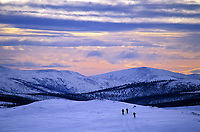Cross country skiing, Steese Mountain National Recreation Area, Alaska