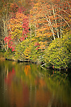 Autumn colors along Trout Lake