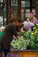 "Students prepare a bed of plantings at Orange Coast College's Ornamental Horticulture Club's in-progress installation at the 2012 South Coast Plaza Spring Garden Show in Costa Mesa, CA.  The theme for this year's show is ""healing gardens"", and the OCC team is installing a ""garden for the blind,"" which will be complete with a braille world globe and braille labels.  This picture was taken Tuesday April 25, 2012 at ~11pm, as the team was working frantically to meet their Thursday-morning deadline.  This image was taken at a high ISO using the ambient light in the dim mall, so it's noisier than my typical images (and thus I'd recommend against printing it large)."
